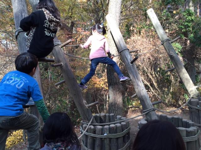 六甲山フィールドアスレチック 大木ゆすり