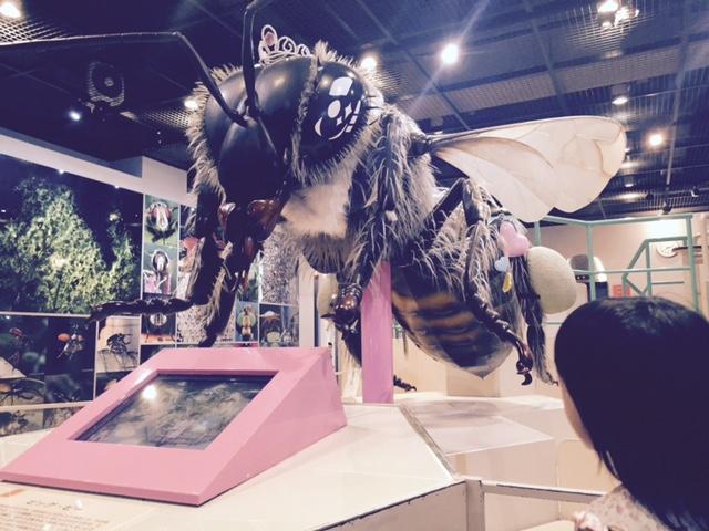 伊丹昆虫館 蜂