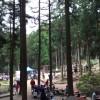 遊び場レポ!期待ほどではなかった六甲山フィールドアスレチック
